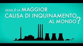 Sai qual'è la maggior causa di inquinamento al mondo?