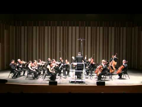 Variations on a Theme of Tchaikovsky, for String Orchestra — Anton Arensky