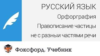 Русский язык. Правописание частицы ''не'' с разными частями речи. Центр онлайн-обучения «Фоксфорд»