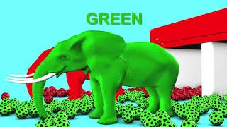 Elephant and  Fun Soccer in car Shand to Learn Colors for Children - 3D Kids Learning Videos