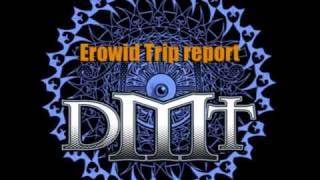 DMT Trip  - Confusion