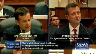''Nobody Believes a Word You Said' FBI agent Peter Strzok