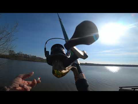 МАНКА с чесноком или МАСТЫРКА?! Рыбалка на поплавок. Ловля карася