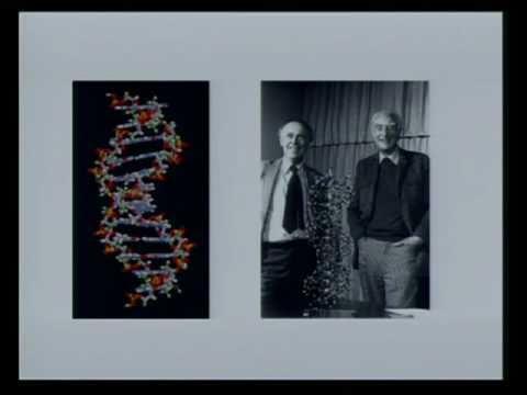 Genesis: pt 1 Creation and Evolution