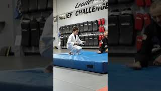 Elisha and David martial arts