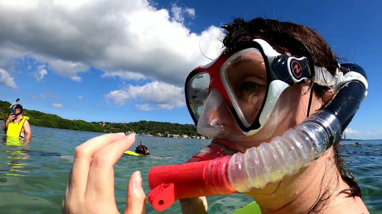 Mahoghany Bay - Snorkel #1 - Carnival Glory - December 26 ...