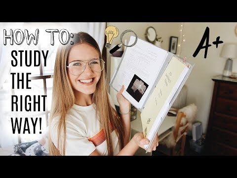 A HOW TO GUIDE TO STUDYING & GETTING THOSE GRADES