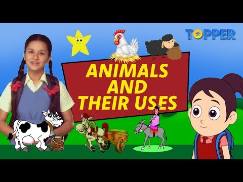 Exploring The Uses Of Animals | Endangered Animals | Class 1 To 5 |