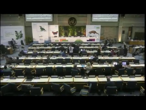 Third United Nations Environmental Assembly -Opening Ceremony - English Language