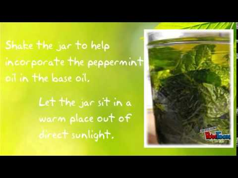 PEPPERMINT INFUSED OIL