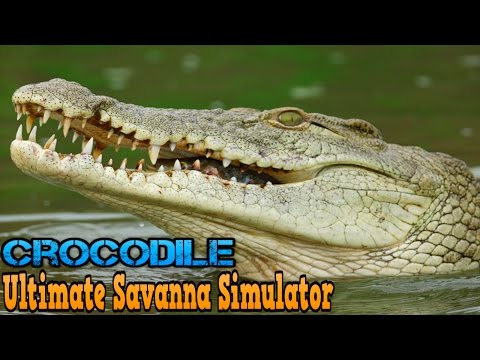 Ultimate Savanna Simulator #Crocodile By Gluten Free Games Action & Adventure iTunes/Android