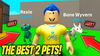 I GOT 2 GODLY PETS IN MONSTER BATTLE SIMULATOR!! *BEST PETS* (Roblox)