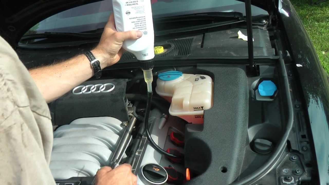 2005 Audi S4 Manual Transmission Fluid Change B6 Youtube