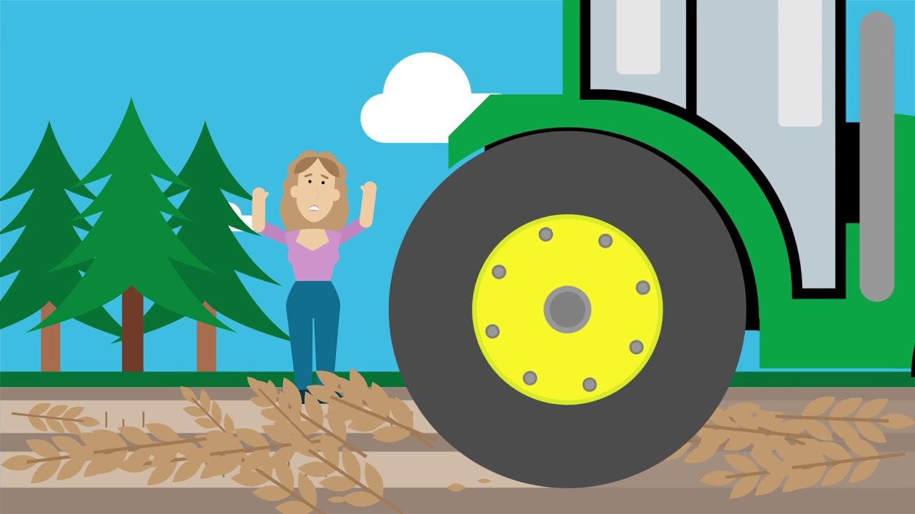 Biomassa | RWE Generation