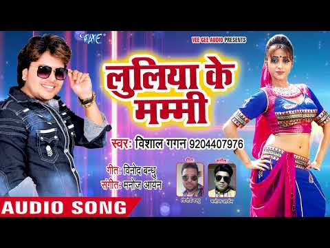 #DJ #आरकेस्ट्रा स्पेशल सुपरहिट गाना 2018 - Vishal Gagan - Luliya Ke Mummy - Bhojpuri Hit Songs