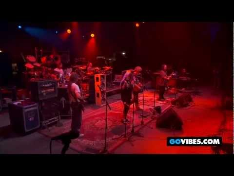 """Dark Star Orchestra Performs """"Scarlet Fire"""" at Gathering of the Vibes 2011"""