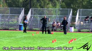 2014 Cpca Trials -  Obedience And Agility -  'jack' And 'kane' -  Youtube