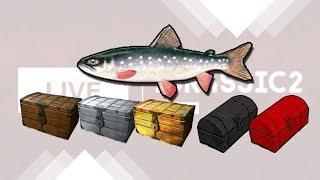 Русская Рыбалка 3.99 Сундуки с даватчаном на Золотой рыбке #1