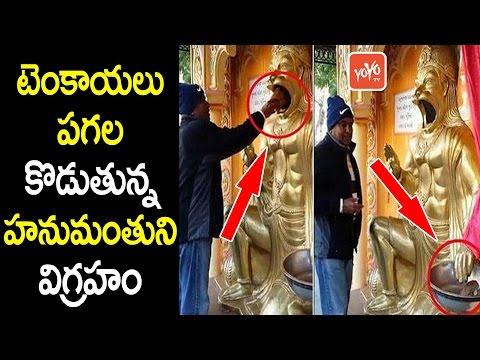 టెంకాయలు పగల కొడుతున్న హనుమంతుని విగ్రహం | Lord Hanuman Statue Breaks Coconuts | YOYO TV Channel