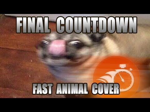 Europe - Final Countdown (Fast Animal Cover) [done within an hour]