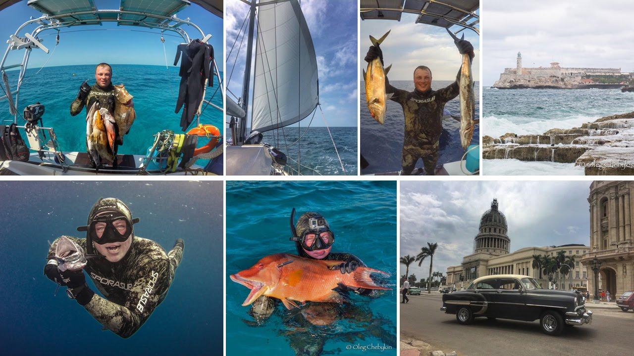 Фото отчеты о подводной охоте на кубе крупных, резких