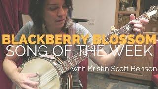 SOTW: Blackberry Blossom feat. Kristin Scott Benson