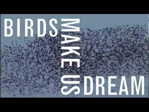 HBW World Bird Photo Contest