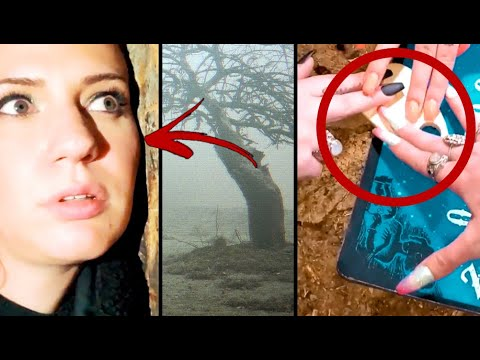 5 Ghost Hunting  Videos And Wicked Paranormal You Will Never Unsee!