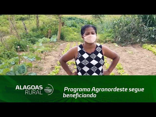 Programa Agronordeste segue beneficiando produtores rurais em Alagoas