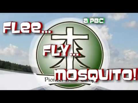 Flee... Fly... Mosquito! Camp Song