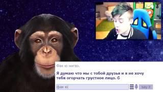 Ивангай и обезьяна чат бот