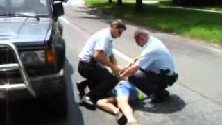 Při zákroku proti opilému řidiči v Havířově kousl pes strážníka do nohy