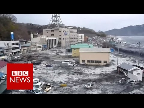 Five years since Fukushima - BBC News