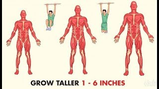 Top 5 Exercises To Increase Height