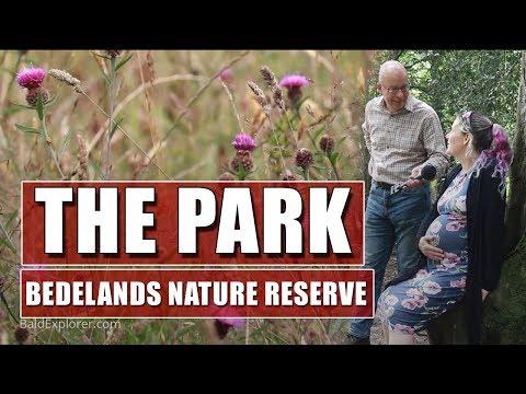 The Park - Bedelands Farm Local Nature Reserve