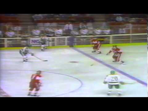 Golden Season- Part 3: 1990-91 NMU Hockey