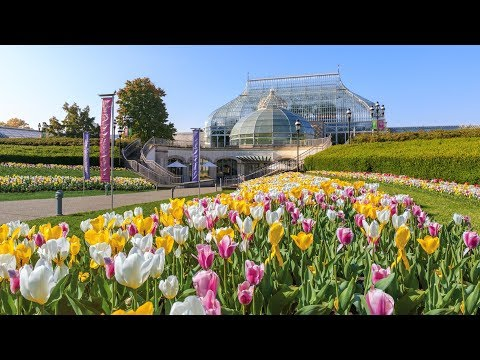 Welcome to Phipps Conservatory and Botanical Gardens