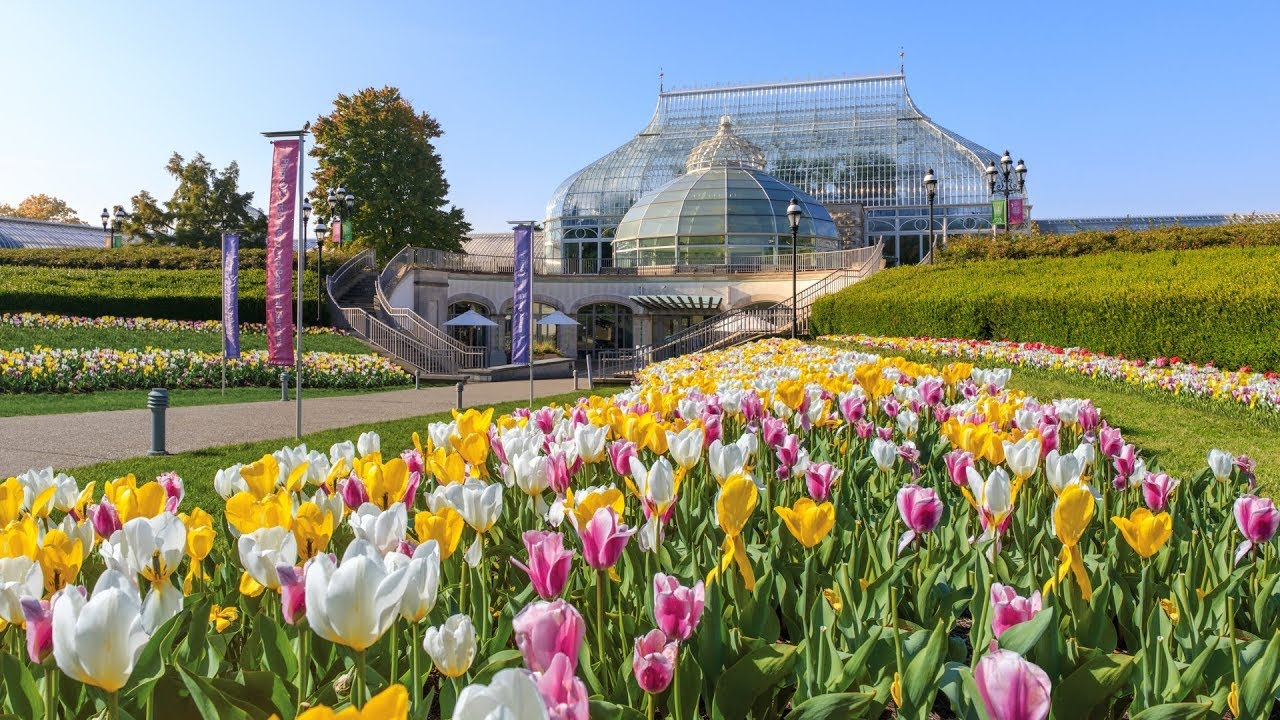 Home | Phipps Conservatory and Botanical Gardens | Pittsburgh PA