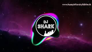 DJ Shark ft. Ebru GÜNDEŞ - Kim Bu Gözlerindeki Yabancı (Remix)