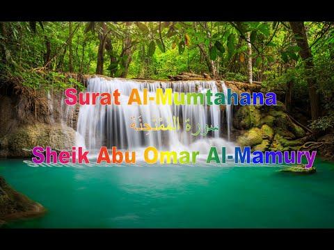 Surat Al-Mumtahana - سورة المُمْتَحِنَة | Sheik Abu Omar Al-Mamury