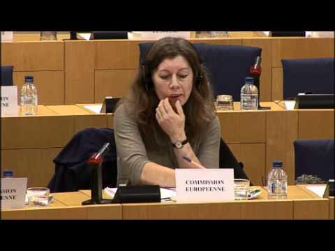 VRT EU Petitions Committee