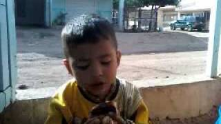 Download Video Jan.3gp MP3 3GP MP4