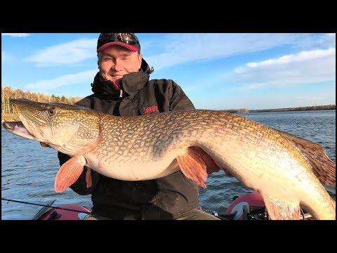 Вопрос: Кто поймал самую большую рыбу в мире?