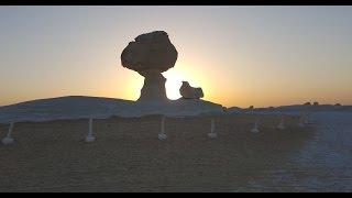 أخبار اليوم   الصحراء البيضاء