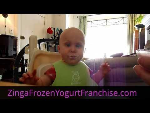 Zinga Frozen Yogurt Franchise 214-284-8876