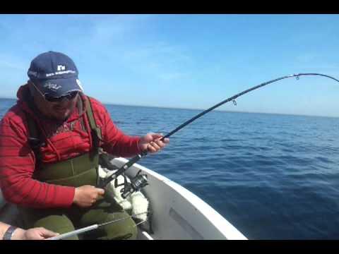 морская рыбалка в дании