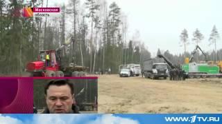 Губернатор Воробьёв проверил место вырубки леса в Балашихе