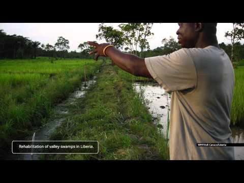 Food assistance for assets (FFA) WFP (EN)