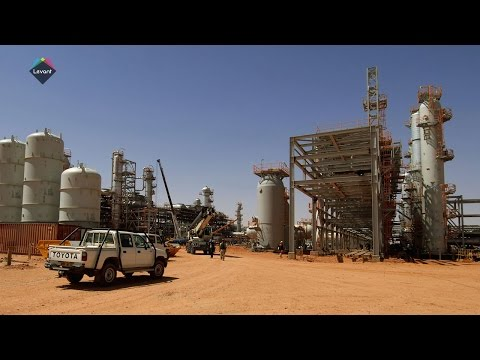Algeria aims to double diesel, petrol output