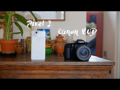 Camera Comparison: Pixel 2 vs DSLR!